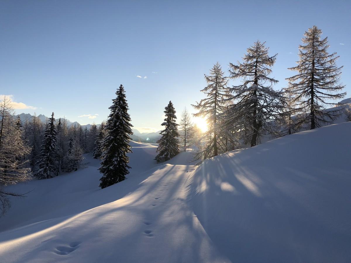 Schneeschuhe